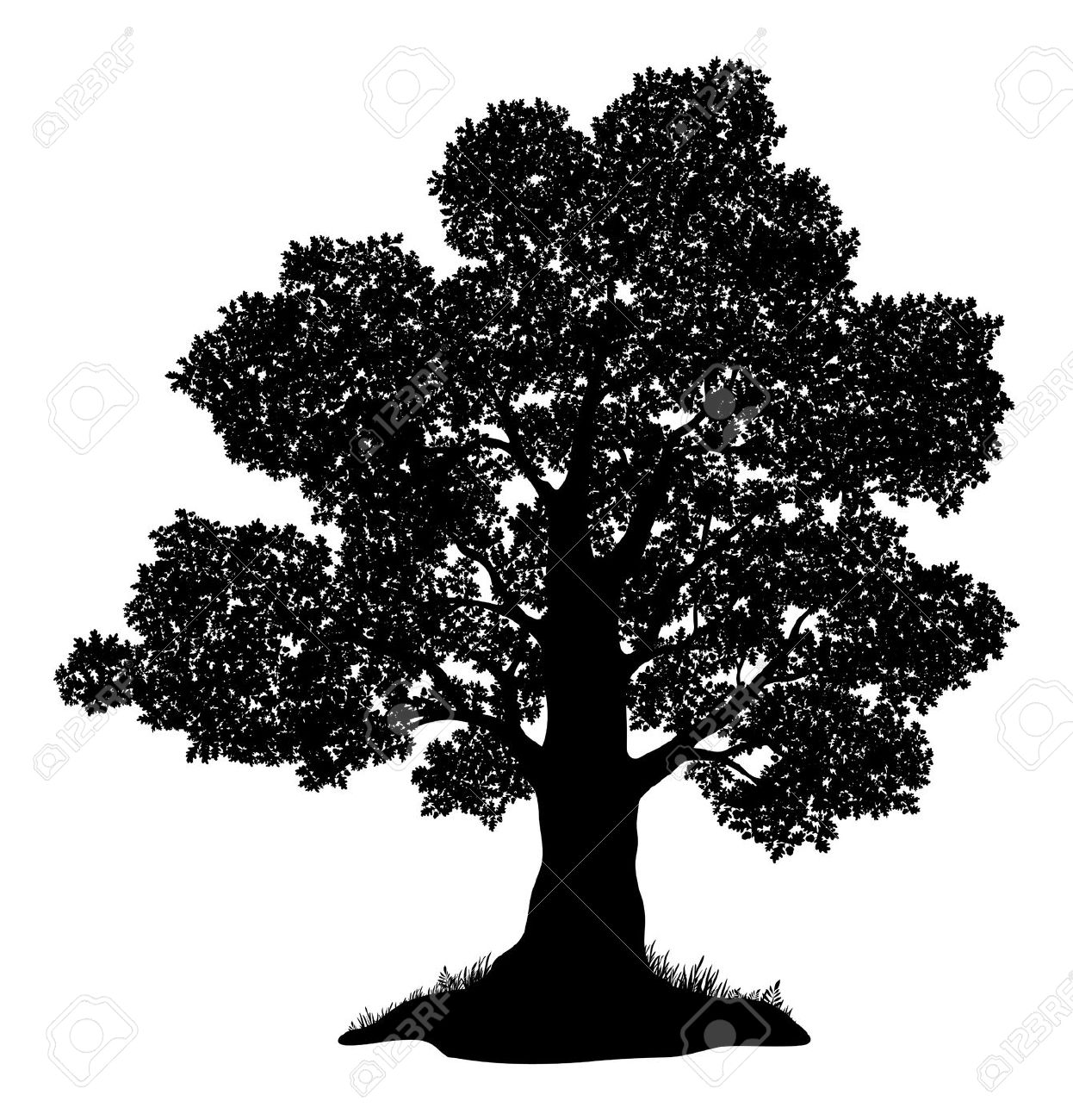 8,596 Oak Tree Silhouette Cliparts, Stock Vector And Royalty Free.