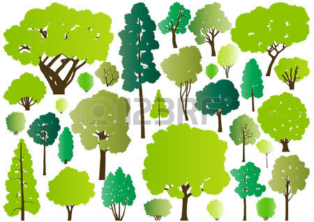 Large Oak Tree Silhouette Stock Photos Images. Royalty Free Large.