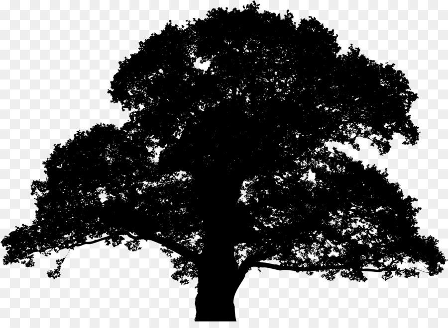 Oak Tree Silhouette clipart.