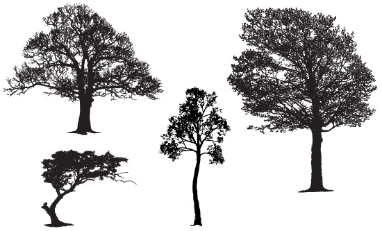Free Vector Sample Pack of Realistic Tree Silhouettes.