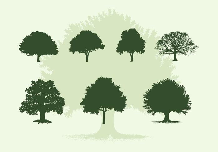 Various Oak Trees Vector Silhouettes Download.