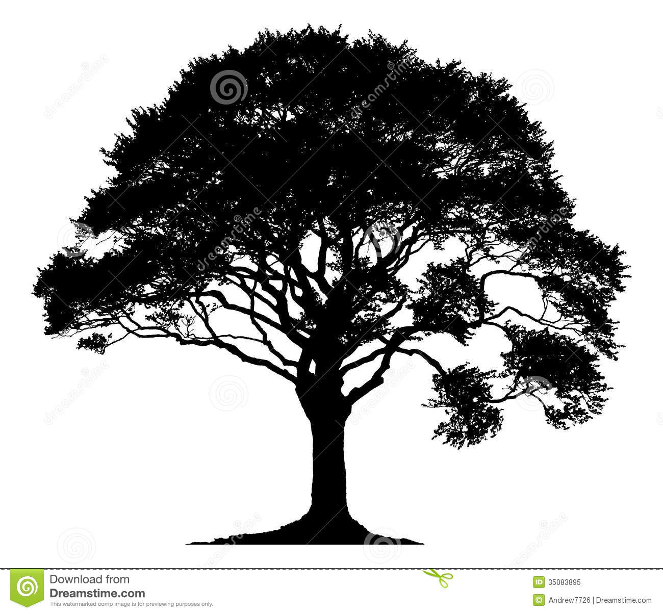 Silhouette Of Oak Tree.