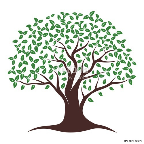 Oak Tree Vector. Oak tree logo illustration. Vector.
