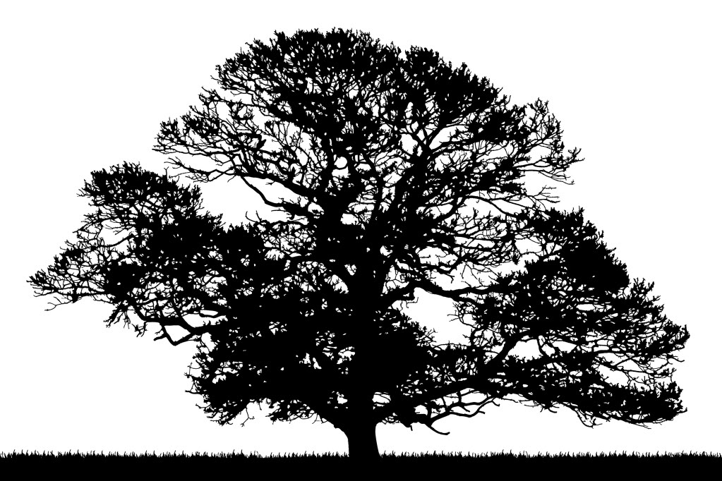 Free Tree Silhouette Roots, Download Free Clip Art, Free.
