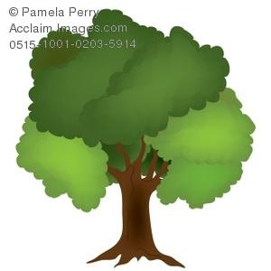 Leafy oak tree clipart.