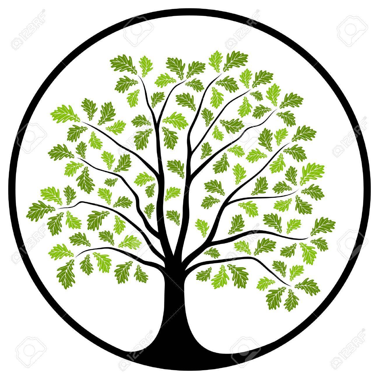 Oak tree clipart 5 » Clipart Portal.