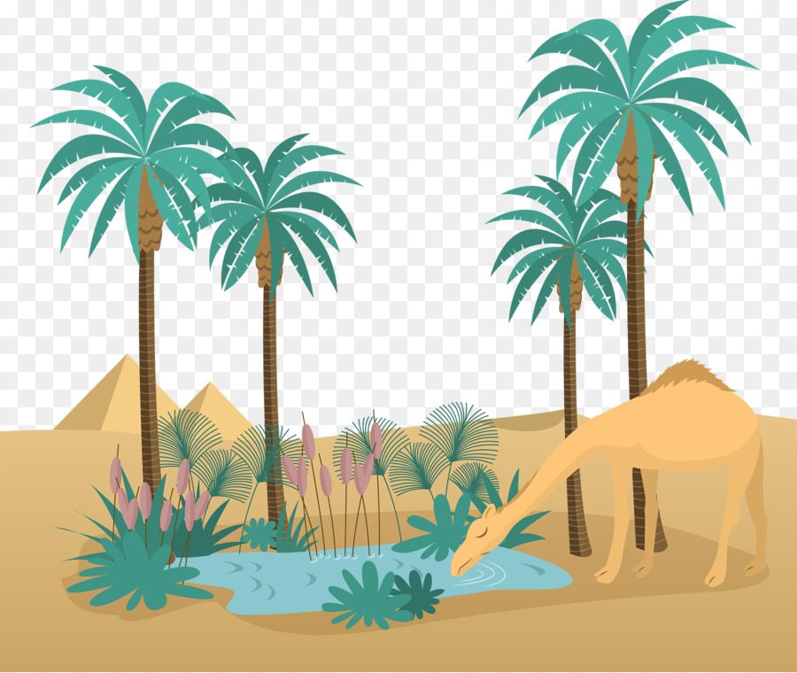 Palm Tree Drawing png download.