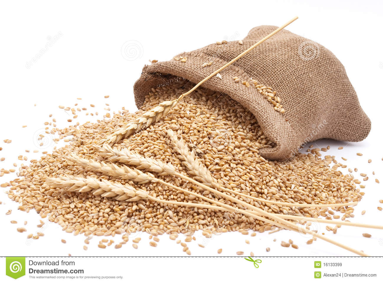 The Scattered Bag With Wheat Royalty Free Stock Images.