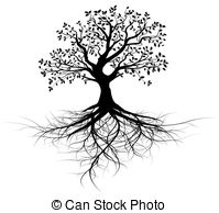 Roots Images and Stock Photos. 128,338 Roots photography and.