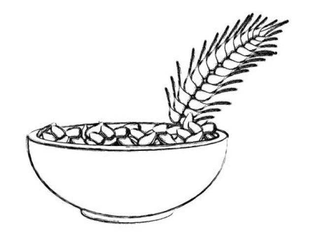 Oatmeal clipart bowl oatmeal, Oatmeal bowl oatmeal.