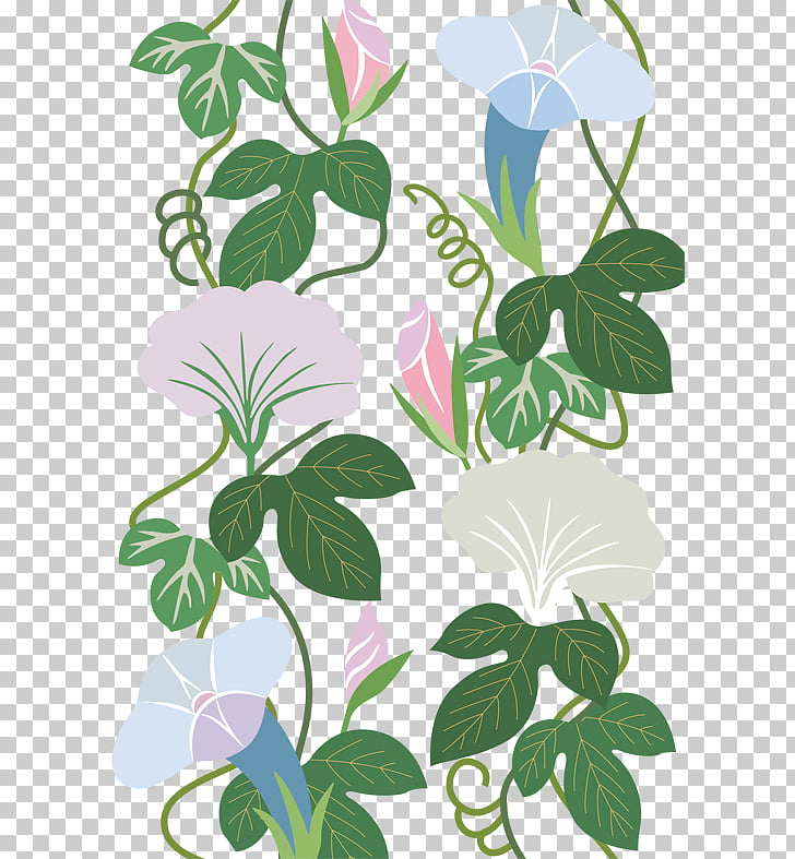 Flower, Trumpet flower vines shading material Obscure PNG.