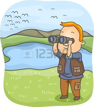 Observe clipart - Clipground