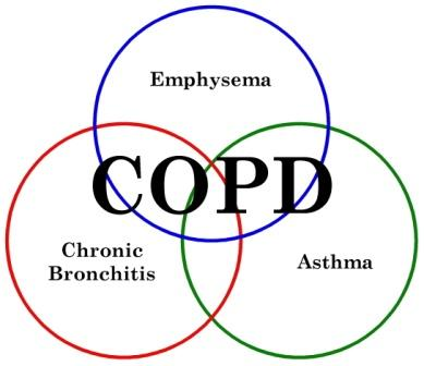 Copd Lung Clipart.