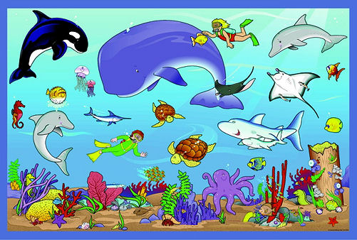 Ocean Animals Clipart.