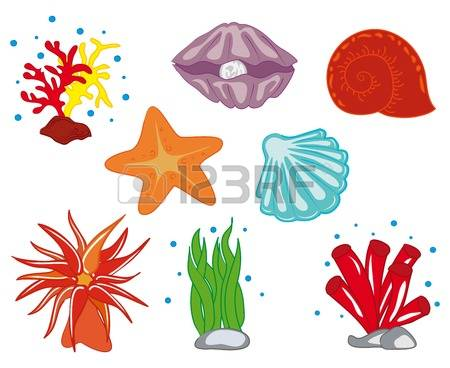 12,553 Ocean Coral Stock Illustrations, Cliparts And Royalty Free.