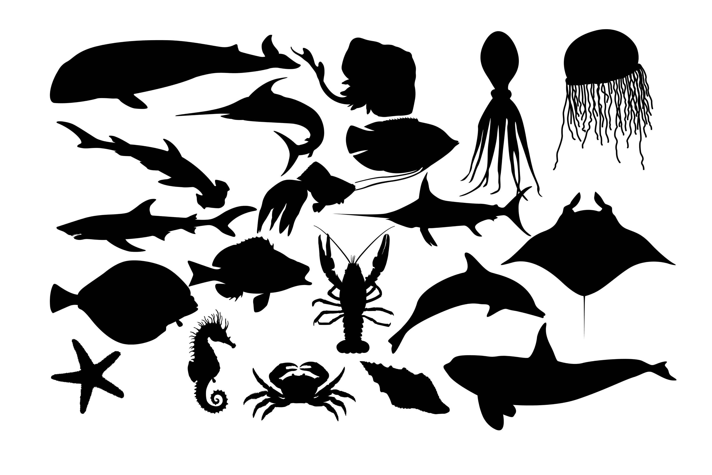 Sea Fish Silhouette, Fish ClipArt, Fish Silhouette, Saltwater fish image,  Ocean fish silhouette, Vector image SVG DXF eps Buy 2 Get 1 FREE.