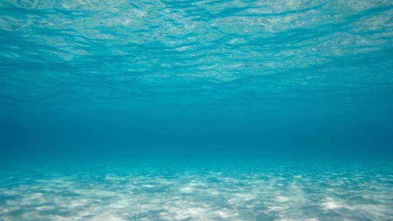 Download Free png Ocean floor background.png.