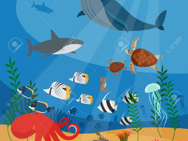 Free Ocean Clipart, Download Free Clip Art on Owips.com.