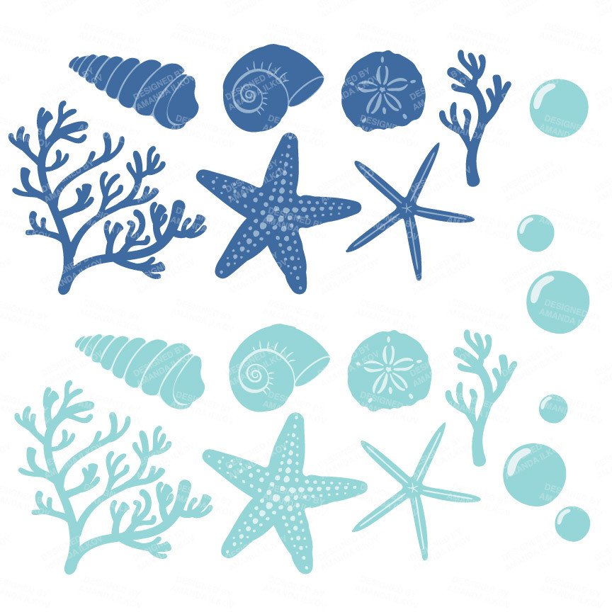 Seashells Clipart in Oceana.