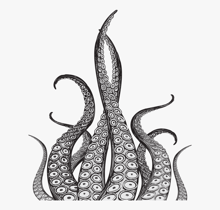 Octopus Tentacles Free Download Png Hd.