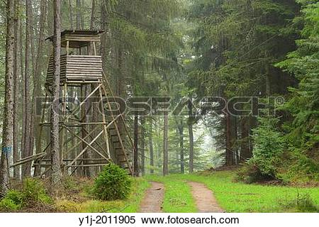 Stock Image of Hunting Blind in forest, Odenwald, Hesse, Germany.