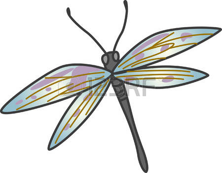 107 Odonata Stock Vector Illustration And Royalty Free Odonata Clipart.