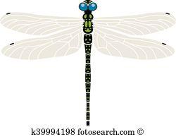 Odonata Clip Art Illustrations. 23 odonata clipart EPS vector.