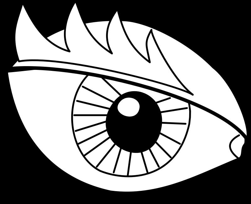 Eye / Oeil Free Vector.