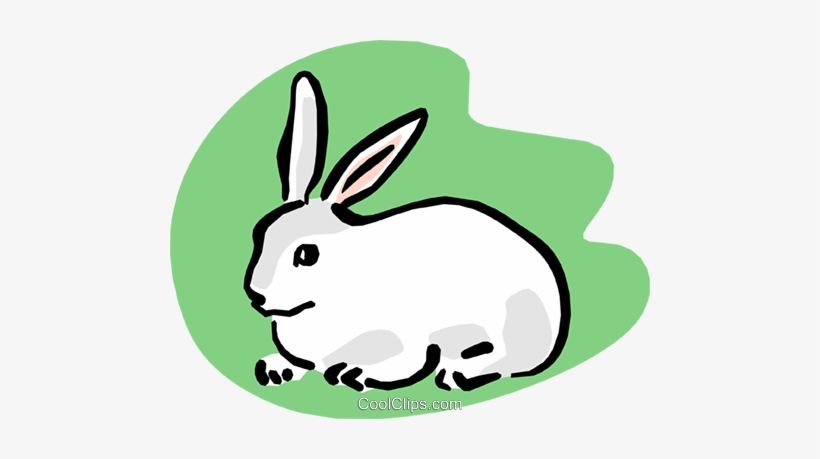 Pet Rabbit Royalty Free Vector Clip Art Illustration.
