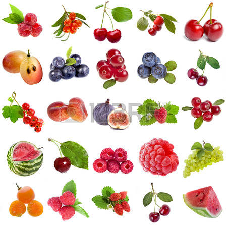 Wild Fruits Stock Photos Images. Royalty Free Wild Fruits Images.
