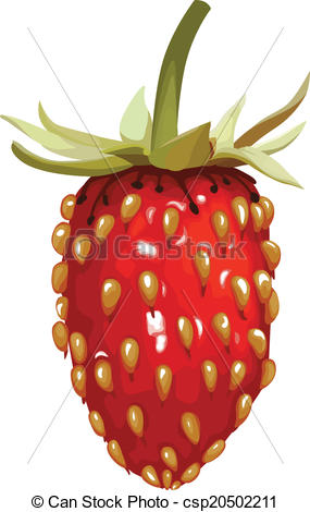 Vector Clip Art of Wild strawberry.