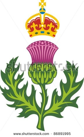 1000+ images about Scottish Thistle on Pinterest.