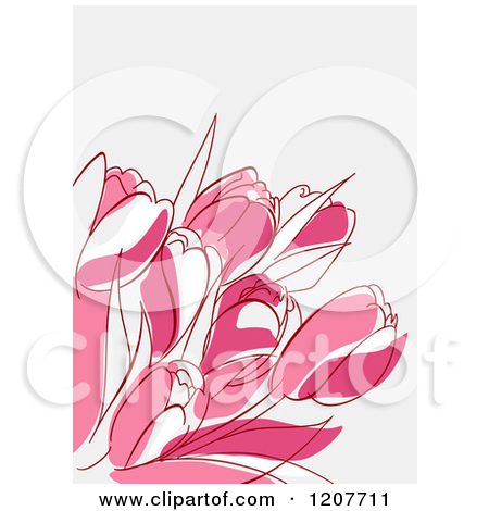 Clipart of a Background of Pink Tulip Flowers on off White.