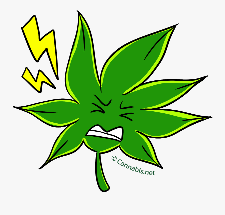 White Fire Og Muscle , Free Transparent Clipart.