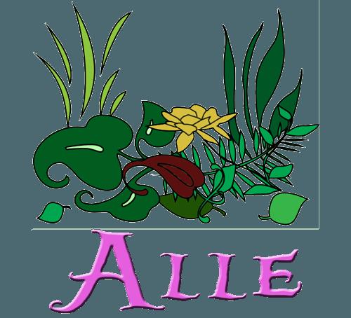 Alle Pflanzen.