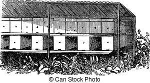 Vectors Illustration of Apiary or Bee yard vintage engraving.
