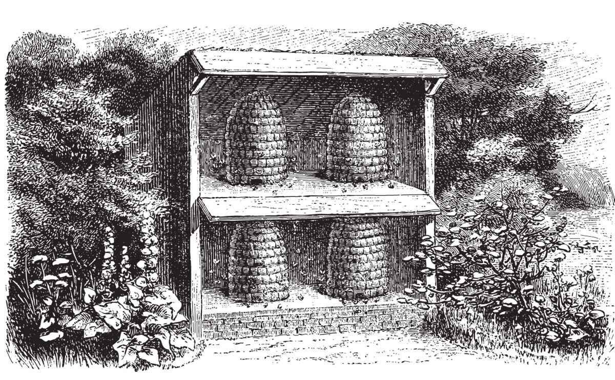 1000+ images about beekeeping on Pinterest.