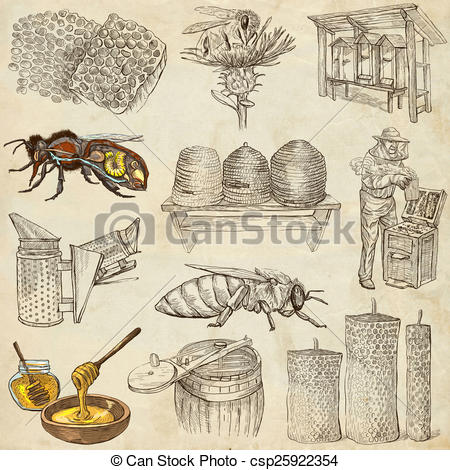 Stock Illustrations of bees, beekeeping and honey.