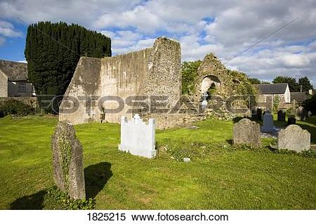 Stock Image of Old church yard ruins near Kilmaganee, Co Kilkenny.