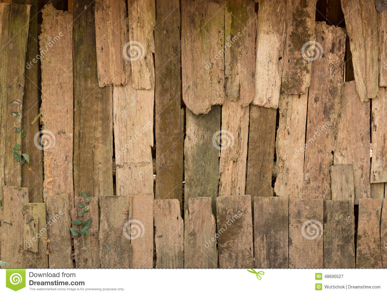 Wall Decay Abstract Stock Photo.