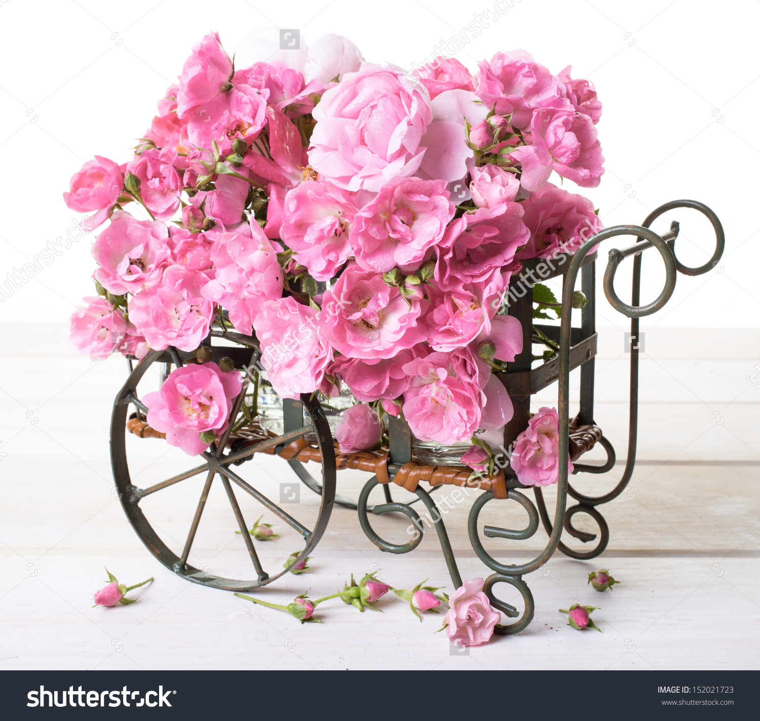 Flower Cart Full Pink Old Fashioned Stock Photo 152021723.