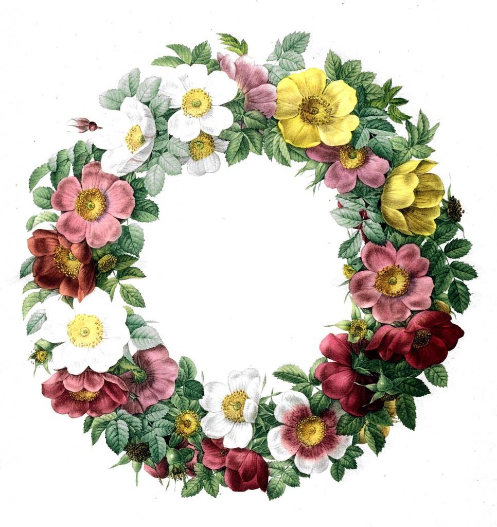 50 Favorite Free Vintage Flower Images!.