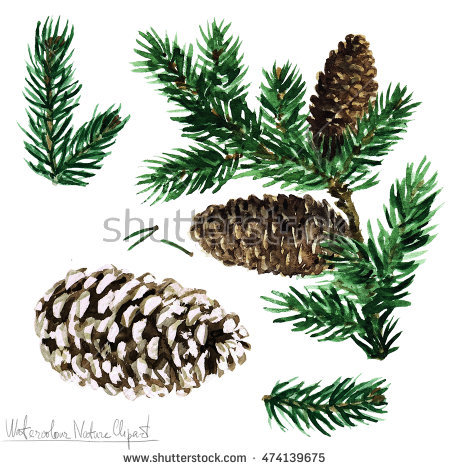 Pinetree Stock Images, Royalty.