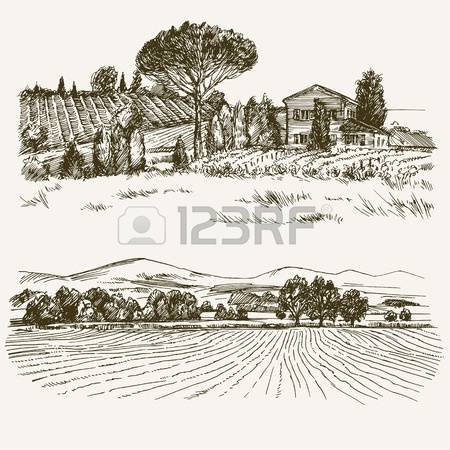 176,334 Fields Stock Vector Illustration And Royalty Free Fields.