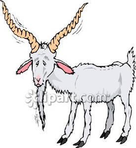 Old Goat Clipart.