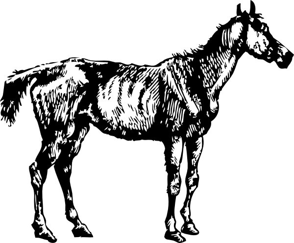 Old Nag Clip Art at Clker.com.