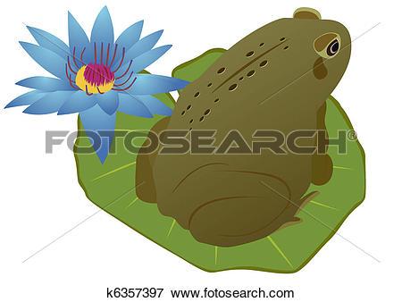 Clip Art of Frog on a lotus leaf k6357397.