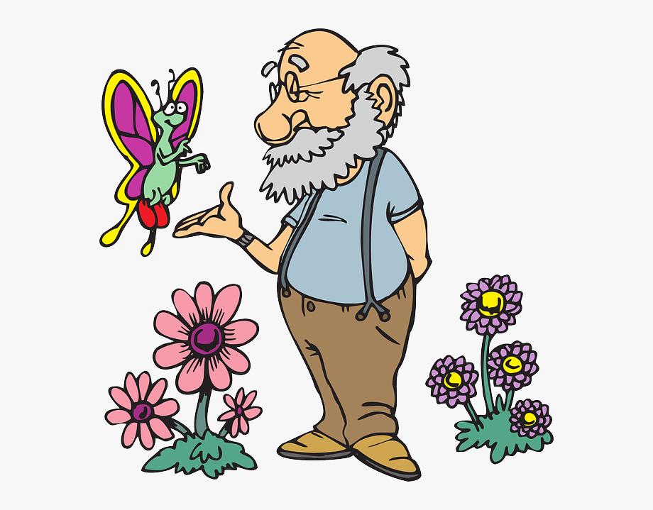 Old Man Flowers Cartoon Butterfly Beard Flower.