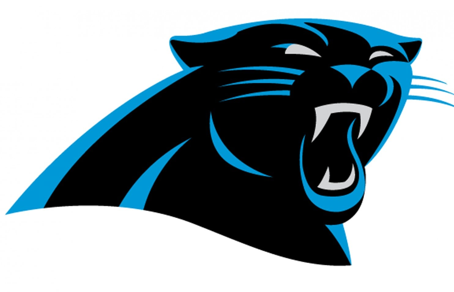 Carolina Panthers unveil \'more aggressive\' logo as Nike.