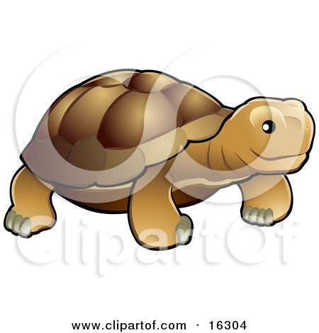 Cartoon of a Happy Old Tortoise Walking with a Cane.